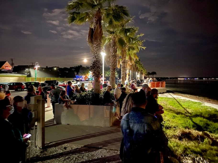 People gathered on a waterfront at night near palm trees.