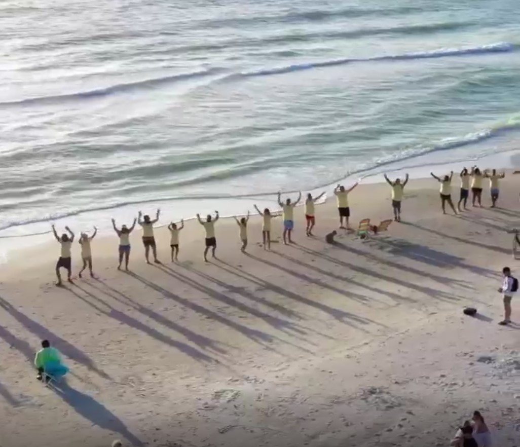 An aerial shot of people in line on a beach