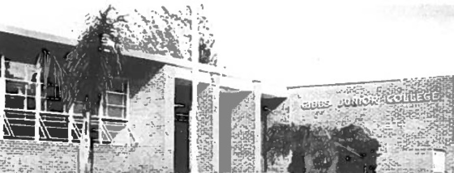 A grainy black and white photo of a building.