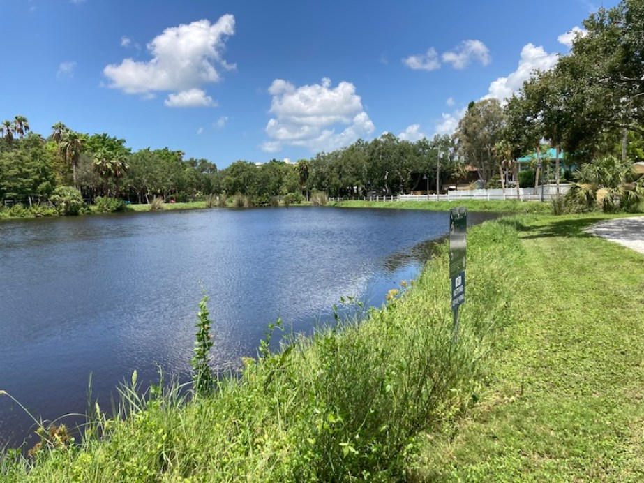 A photo of a pond in a grassy park on a sunny day with blue sky and a few clouds.