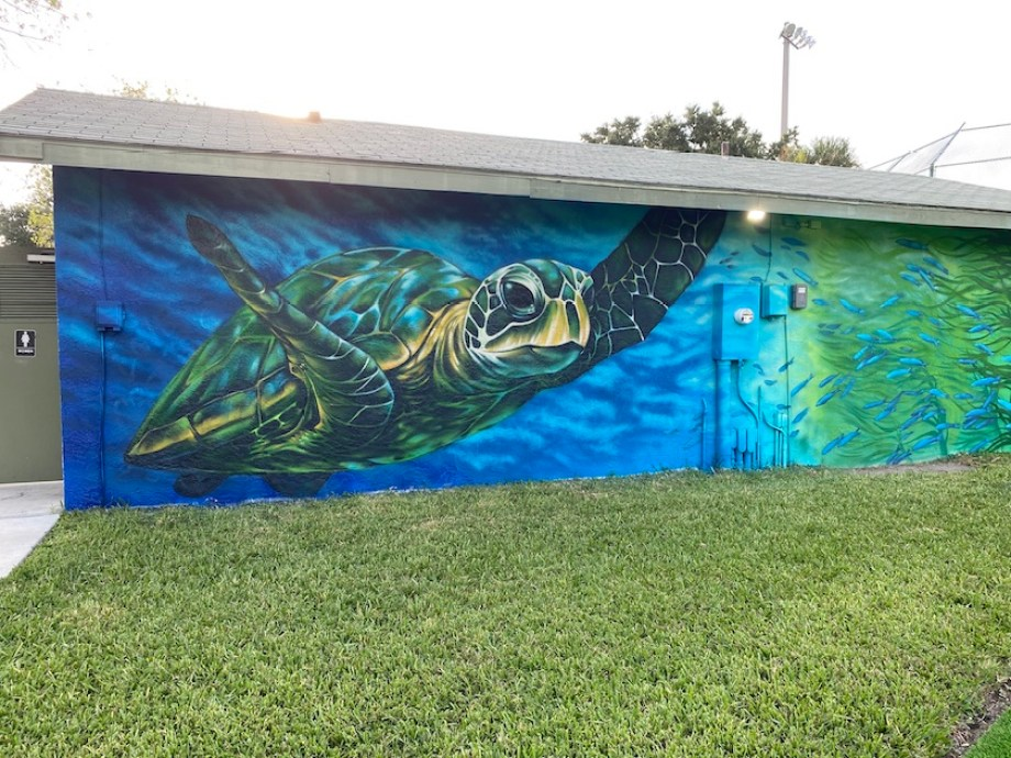A photo of a large mural on the side of a building featuring a sea turtle swimming in blue waters.
