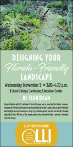 Eckerd college web ads