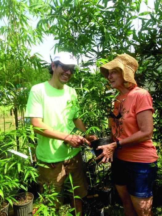 David Conklin, of St. Petersburg, got educated on the different types of bamboo by Karlyn Bradshaw of Island Bamboo on 66th Street in Pinellas Park during the annual Green Thumb Festival.