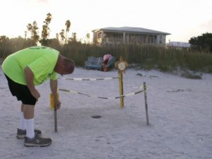 Joe Widlansky of the non-profit Sea Turtle Trackers marks a nest whose eggs have already hatched. After 72 hours have passed, volunteers will dig up the nest and count and record the number of unhatched eggs.