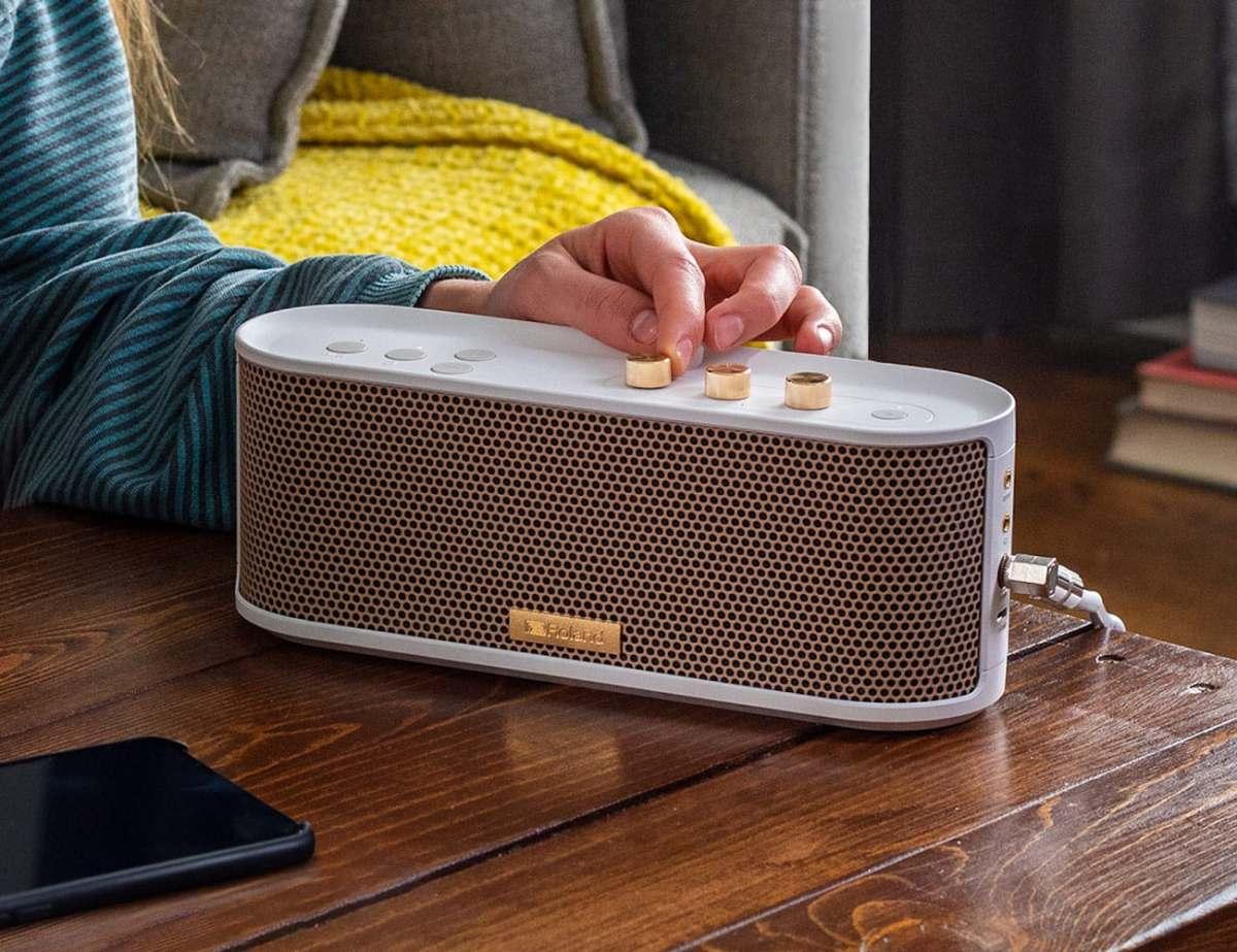 Roland BTM-1 Bluetooth Speaker with Instrument Input