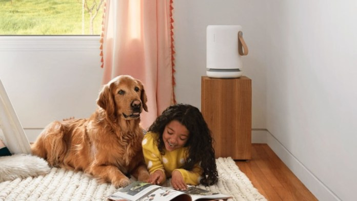 Molekule Air Mini Series Home Air Purifiers