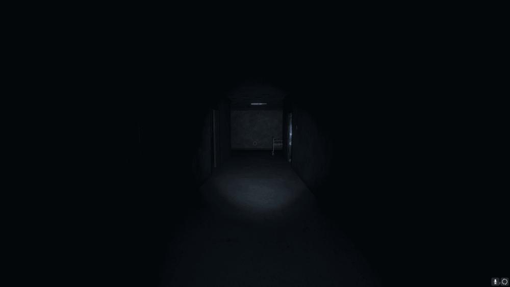 Empty abandoned hospital hallway lit by flashlight.