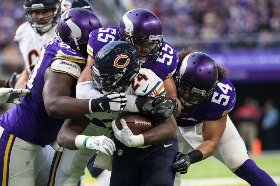 Minnesota Vikings' linebacker