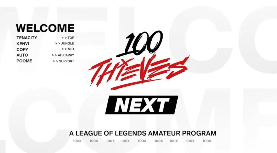 100 Thieves Next