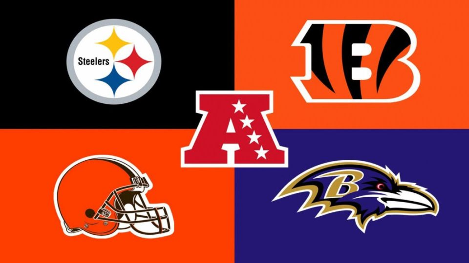 steelers win afc north