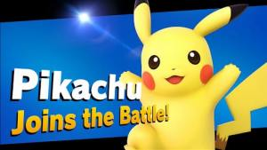 Smash Bro image for the look