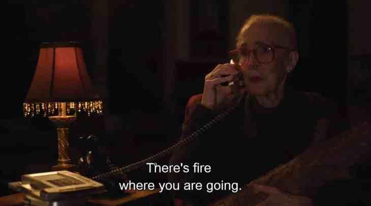 311 log lady fire