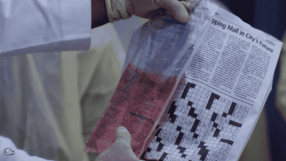 crossword blood
