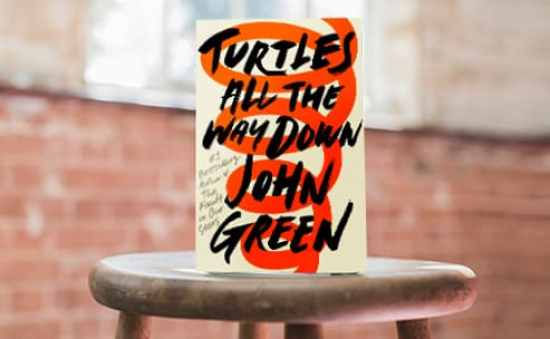 turtles-all-the-way-down-first-chapter788-x-306.jpg