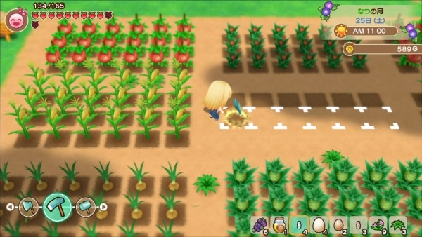 story-of-seasons-friends-of-mineral-town-2019-07-31-19-015-600