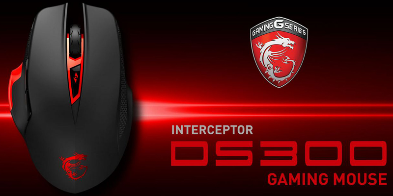 MSI Interceptor DS300