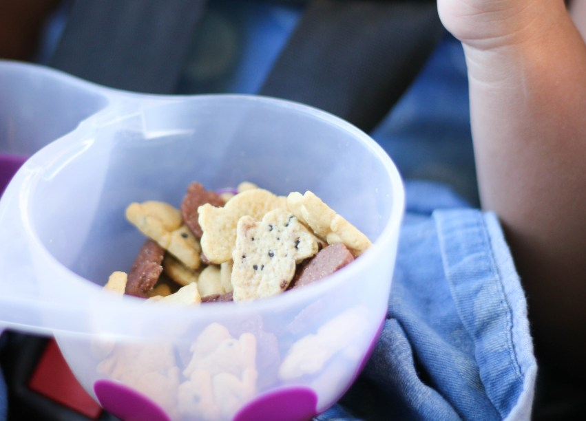 the best snacks for families on the go