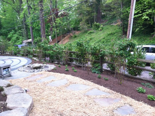 Just planted bed with stepping stones planted with grass seed