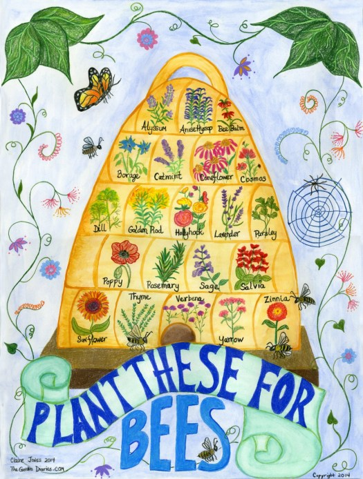 Bee Skep Poster for flowers to plant to attract bees