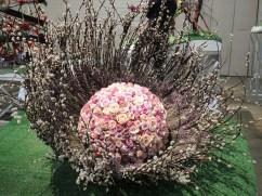 Philadelphia flower show 2014 006