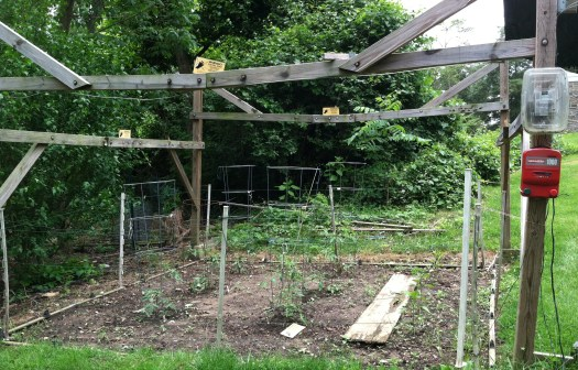 Electric fence around veggie garden