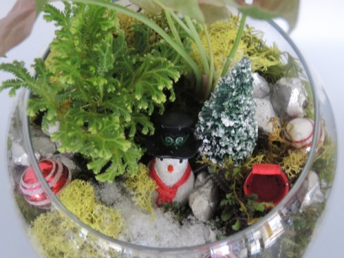 A woodland Christmas scene that you would water a little more