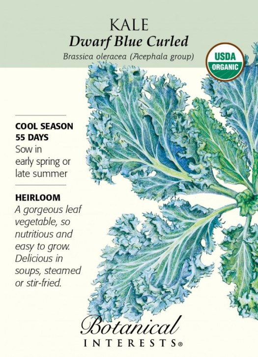 Kale is beautifully illustrated