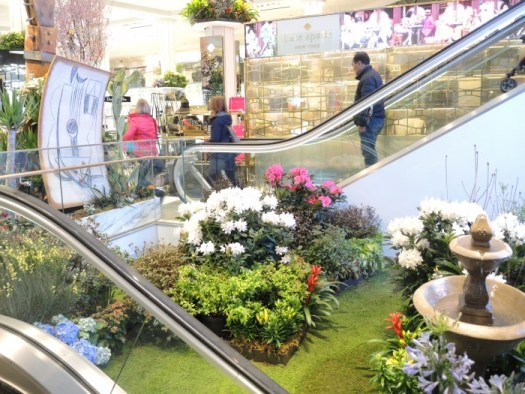 A springtime scene between Macys escalators