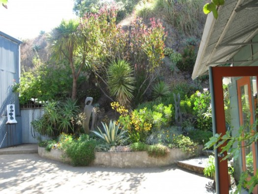 Using arid loving plants doesn't mean boring- seen in front yard in California