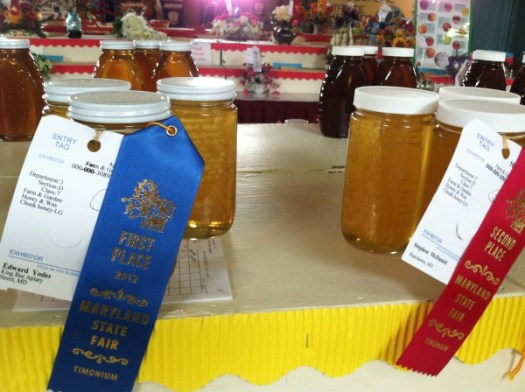 Honey being judged at a State Fair
