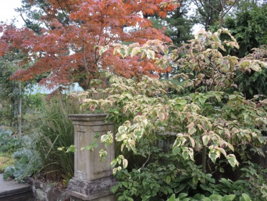 Chanticleer Garden has wonderful layered gardens throughout