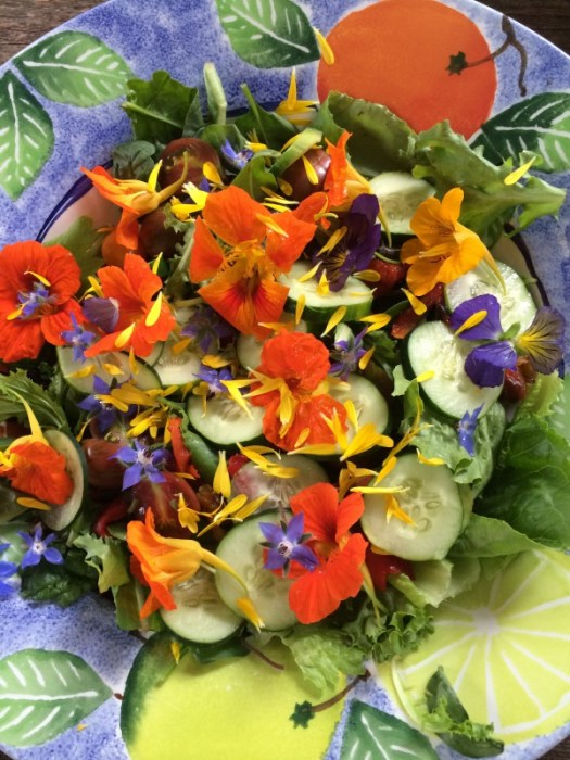 Edible flowers garnishing a salad
