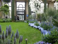 Blue and white at Longwood Gardens
