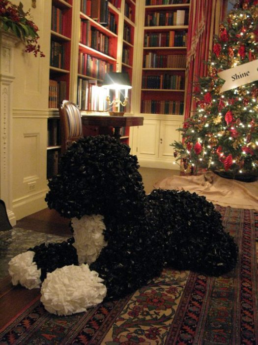This Bo in 2011 was made out of trash bags!