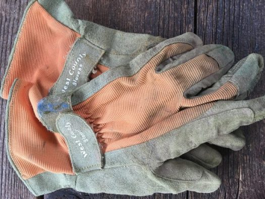 My West County gloves are a couple years old