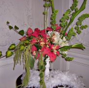 An arrangement with Bells of Ireland and Love Lies Bleeding