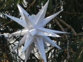 Hundreds of these stars were on the spruce tree
