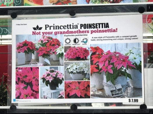 Princettia Poinsettia sign at Valley View Farms