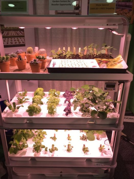AutoCrops' hydroponic set up called LF-ONE