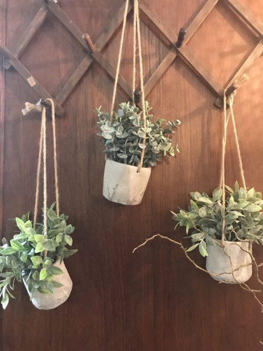 Houseplants can be hung, elevated, and displayed creatively to suit your space