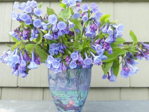 Bluebells in an arrangement
