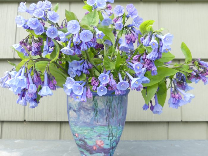 Bluebells in an arrangement