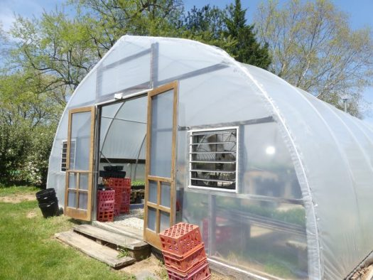 One of Susan's large hoop house greenhouses