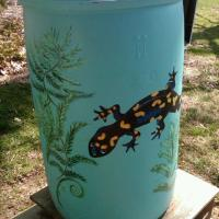 Rain Barrel Eye Candy