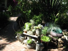 A bench with pots