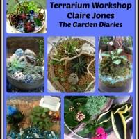 Terrarium DIY-Scenes Under Glass