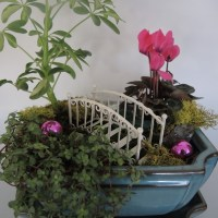 Miniature Christmas Garden Craze
