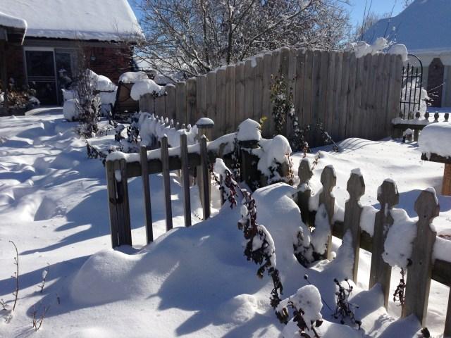 Gate going into the herb garden...