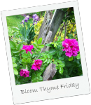bloom-thyme-friday