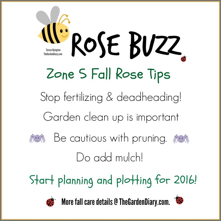 ROSE BUSS_FALL CARE